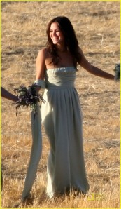 rachel-bilson-bridesmaid-05